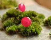 Raspberry Fizz Dots Stud Earrings - Hypoallergenic Surgical Stainless Steel Post Earrings