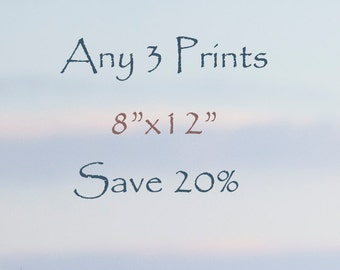 "20% Off - Select Any Three 8""x12"" fine art horse prints -Prints - Photographs - Discount"