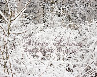 NEW Item 7ft x 8ft Vinyl Photography Backdrop / SNOW Brush / Holiday / WINTER