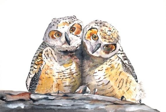 Owls Painting Bird Art nature wildlife watercolor- O077-  print of watercolor painting- A4 print wall art print - bird art print