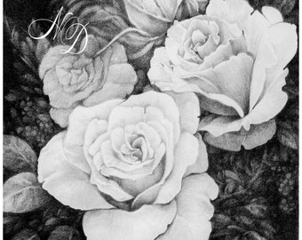 """FRAMED ORIGINAL Drawing, 12x12"""", Rose, Bouqet, Flowers, Black and White, Woman, Mother's Day, Birthday Gift, Anniversary Gift, Black Frame"""