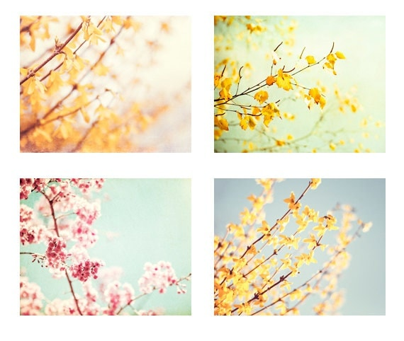 Flower Photography Set, Four 11x14, 8x10 Photographs, spring pastel pale photo mint floral yellow pink green print nature wall art botanical