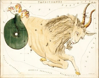 Antique Astrology Art Print - 8 x 10 - Capricorn
