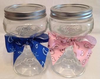2 Hillbilly REDNECK MARTINI GLASSES Rednek Wine Glass Mason Jar Funny Gift Idea