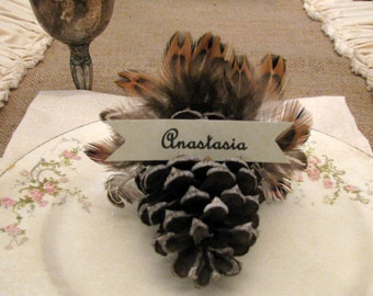 4 Pinecone turkey place cards