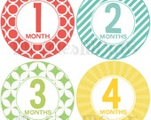 Monthly Baby Boy Stickers, Milestone Stickers, Baby Month Stickers, Monthly Bodysuit Sticker, Monthly Stickers Gender Neutral (Dayton)