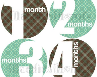 Monthly Baby Boy Stickers, Milestone Stickers, Baby Month Stickers, Monthly Bodysuit Sticker, Monthly Stickers Gray Turquoise (Grayson)