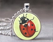 Lady Bug, Insect, Photo Pendant, Altered Art Pendant, Glass Dome Pendant, no 999-8