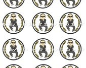 Gangnam Style 2 inch Round Cupcake Topper, Stickers, Favor Tag, Scrapbook, Digital Collage Sheet