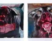 Zombie Dog Portraits