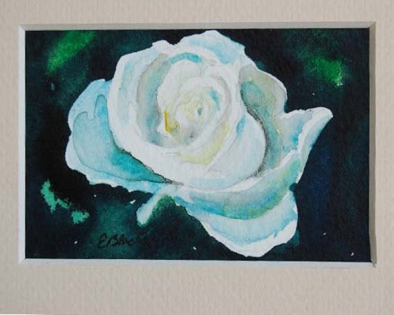 watercolor ORIGINAL Honor Rose flower white ACEO watercolour