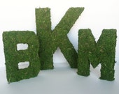 Wedding Decor Moss Letters - Monogram Wedding Letters -