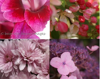 Floral Collection. 50 Photographic Image cards. Choose 4 images from any of the 3 photographic sections. A6 size. Blank.