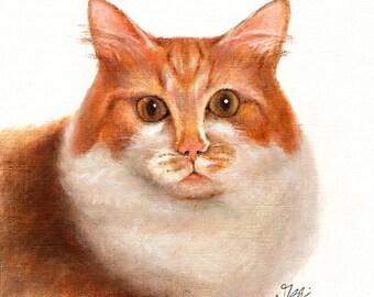 Original Oil CAT Portrait Painting CYMRIC Art Artwork on Canvas KITTEN Signed