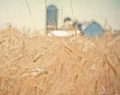 Farm Field 8x10 Photograph, Wheat Field and Barn Print, Summer Home Decor , Rustic Country Wall Art, tan grey, blue, tbteam - PureNaturePhotos