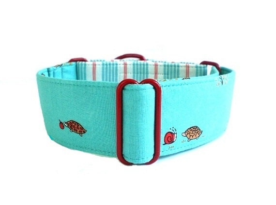 Turtles and Apples Martingale Dog Collar