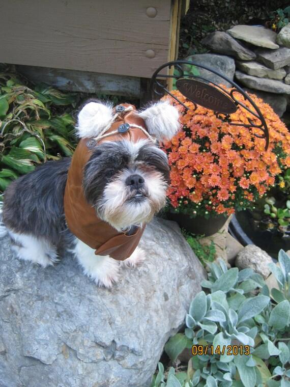 Medium Dog Leather Hood/Halloween Costume