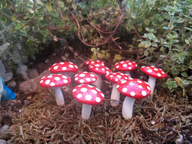 Gnome Garden: FREE Shipping 10 Fairy Garden Mushrooms Miniature Terrarium