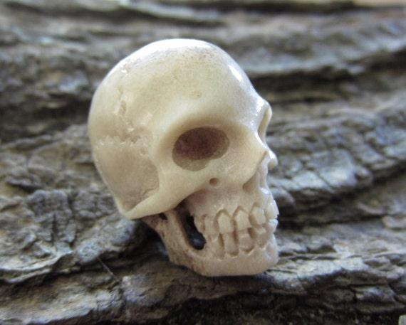 Deep relief carving human skull from deer antler bone
