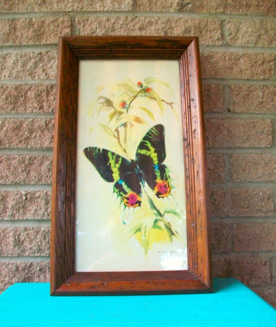 Framed Watercolor Butterfly Art Print Wall Hanging Painting