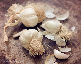Food Photography - Kitchen Art - Garlic - Dining Room Decor - Kitchen - Foodie Gift - Fine Art Photography Print - Brown White Home Decor