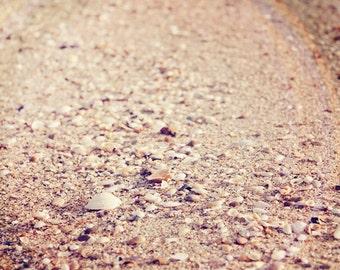 Beach Photography - Shell Photograph - Minimalist Photo - Beach Sand Photo - Shells - Fine Art Photography Print - Neutral Tan Home Decor