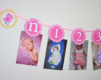 Little Bird First Year Photo Banner, Birdie First Birthday Party
