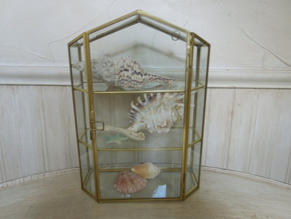 Vintage Glass and Brass Terrarium Glass and Brass Terrarium