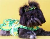 DOG DRESS -- Yellow & Green Daisy
