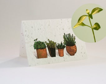 Greeting card Garden herbs - blooming greeting card with flower seeds and watercolor illustration