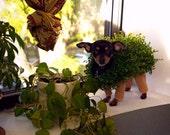 Pet Halloween costume for your pet -  Chia Pet inspired .... .dog ...cat ... plant terra cotta legs