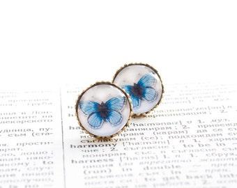 Crown Blue Butterfly Earings Studs, Art Noveau gift, Brass earrings  3/4 inch (16mm), Crown Earrings