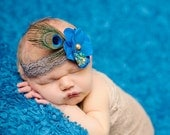 Peacock Headband, baby headband, newborn headband, photo prop