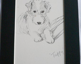 TERRIER DOG Vintage Mounted 1937 'Mac' Lucy Dawson Taffy Wire haired terrier dog plate print Ideal   gift