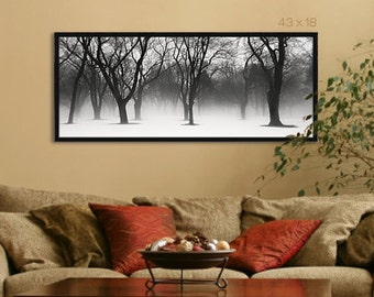 Black and White Fine Art Photography - Winter Trees in Snow, Large Wall Art