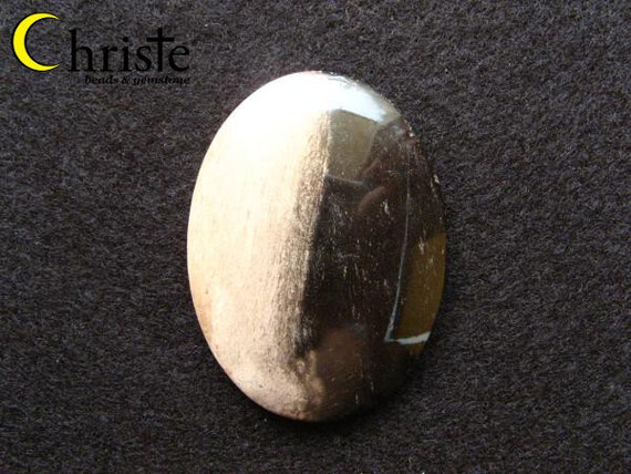 Natural bi-color Fossil Wood / Petrified Wood Cabochon oval 34x44mm
