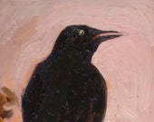 Crow Portrait Original Oil Painting 8 x 10