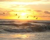 Nags Head NC Beach Summer Sunrise with Birds, Coastal Beach Decor, Photo Art, Frame Option