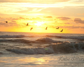 SALE Nags Head NC Beach Summer Sunrise with Birds, Coastal Beach Decor, Photo Art, Frame Option