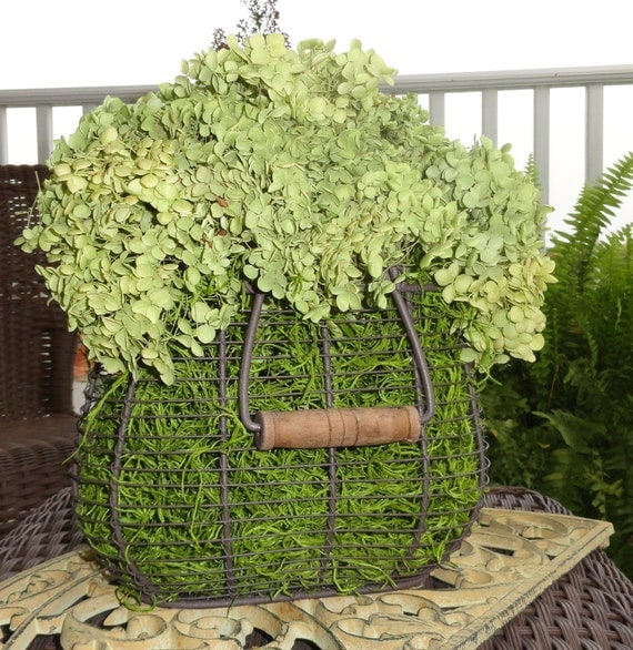 Dried Hydrangea Arrangements: Rustic French Country Chic Dried Green Hydrangea Wire Egg