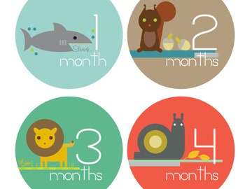 Zoo Animal Monthly Baby Stickers - Pet Detective - Baby Boy Monthly Stickers - Milestone Stickers - Bodysuit Stickers - Set of 12