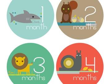 Monthly Baby Stickers, Baby Boy Month Sticker - Zoo Animals - Months 1-12