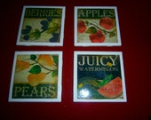 Assorted Fruits Coaster Set