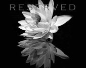 "RESERVED Black and White Fine Art Print 12"" x 12"""