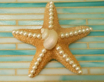 Beach Decor Starfish - Starfish and seashells - Decorated Starfish