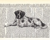 Resting Noble St. Bernard Dog Vintage Art Print on Upcycled Antique Dictionary Page