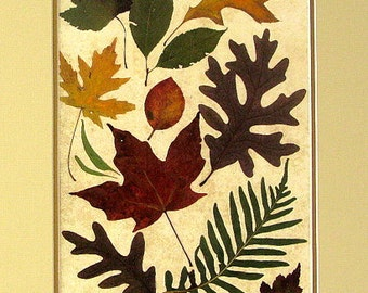 Fall Leaves No. 2