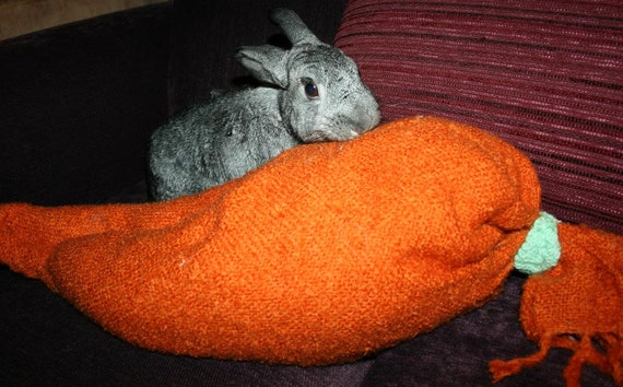 reserve for Crystal Nicole - giant carrot pillow bed toy for bunny rabbits