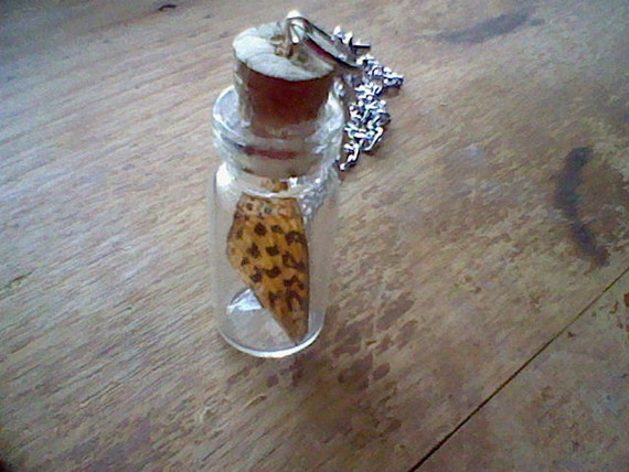 Real Butterfly Wing Necklace - Apothecary Jar - Limited Edition Nature in a Bottle Collection