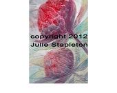 Waratah painting red flower art  print gift
